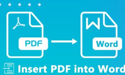 insert pdf into word