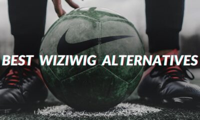 Wiziwig Alternative